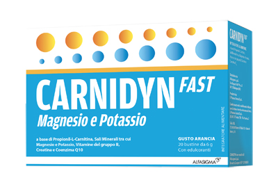 CARNIDYN FAST MAGNESIO/POTASSIO 20 BUSTINE