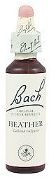 HEATHER BACH ORIGINAL 10 ML