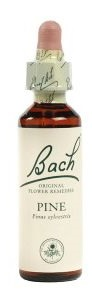 PINE BACH ORIGINAL 10 ML